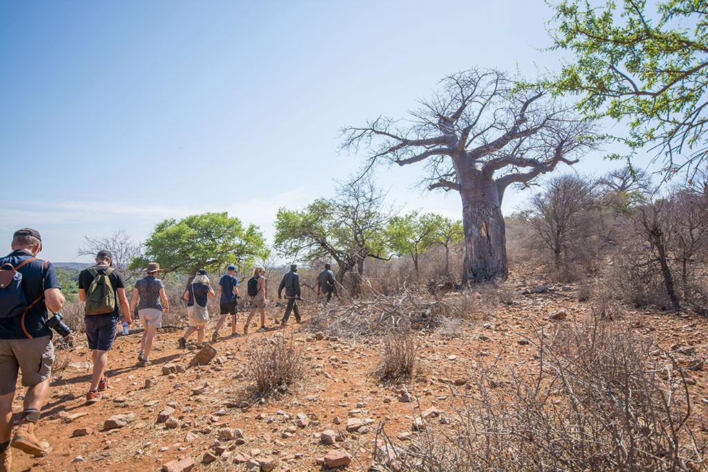 Mapungubwe-Thulamela-MvZ-2-